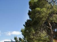 Urlaub Reisen  Spanien Balearen Playa de Palma Hotel Barceló Pueblo Park