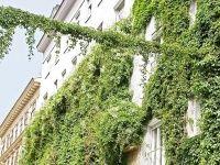 Urlaub Reisen  Österreich Niederösterreich Wien (Städtereise) Best Western Hotel Harmonie