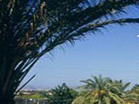 Urlaub Reisen  Spanien Balearen Alcúdia Hotel Marina Delfin Verde