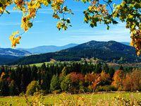 Urlaub Reisen  Deutschland Bayern Grafenau