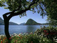 Urlaub Reisen  Schweiz Tessin Lugano