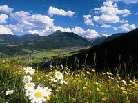 Urlaub Reisen  Österreich Salzburger Land Flachau