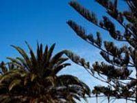 Urlaub Reisen  Spanien Kanaren Maspalomas Club Maspalomas Uno