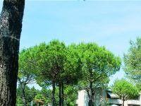 Urlaub Reisen  Italien Venetien Bibione Appartements White Star