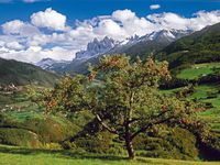 Urlaub Reisen  Italien Südtirol Hafling (Meraner Land)