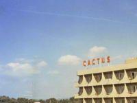 Urlaub Reisen  Spanien Balearen Playa de Palma Hotel Los Cactus