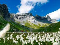 Urlaub Reisen  Schweiz Graubünden Laax