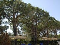 Urlaub Reisen  Italien Toskana Chianciano Terme  Hotel Fortuna