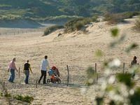 Urlaub Reisen  Niederlande Holländische Küste Noordwijk