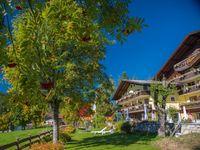 Urlaub Reisen  Österreich Steiermark Ramsau am Dachstein Hotel Almfrieden