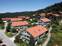 Urlaub Reisen  Deutschland Bayern Bodenmais Ferienwohnungen Dorfclub Bodenmais