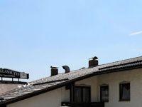 Urlaub Reisen  Deutschland Bayern Hohenau Hotel Glashüttenstern