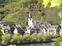 Urlaub Reisen  Deutschland Rheinland-Pfalz Löf (Mosel)