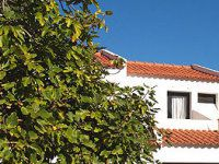 Urlaub Reisen  Portugal Algarve Albufeira Appartementanlage Algarve Gardens