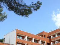 Urlaub Reisen  Spanien Balearen Paguera Hotel Madrigal