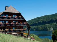 Urlaub Reisen  Deutschland Baden-Württemberg Hinterzarten Boutique-Hotel Alemannenhof