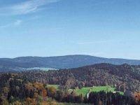 Urlaub Reisen  Deutschland Bayern Drachselsried