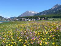 Urlaub Reisen  Italien Südtirol St. Valentin auf der Haide
