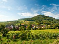 Urlaub Reisen  Deutschland Rheinland-Pfalz Otterberg