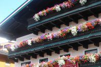 Urlaub Reisen  Österreich Salzburger Land Maria Alm Hotel Pinzgauer Hof