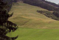 Urlaub Reisen  Österreich Salzburger Land Saalbach-Hinterglemm Alpin- & Golfhotel Interstar Alpin