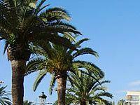 Urlaub Reisen  Spanien Festland Lloret de Mar Hotels Costa Brava