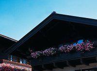 Urlaub Reisen  Österreich Salzburger Land Saalbach-Hinterglemm Hotel Wechselberger