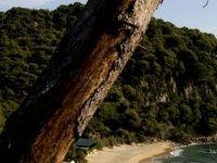 Urlaub Reisen  Spanien Festland Santa Susanna