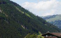 Urlaub Reisen  Österreich Salzburger Land Saalbach-Hinterglemm Bauernhofhotel Eggerhof